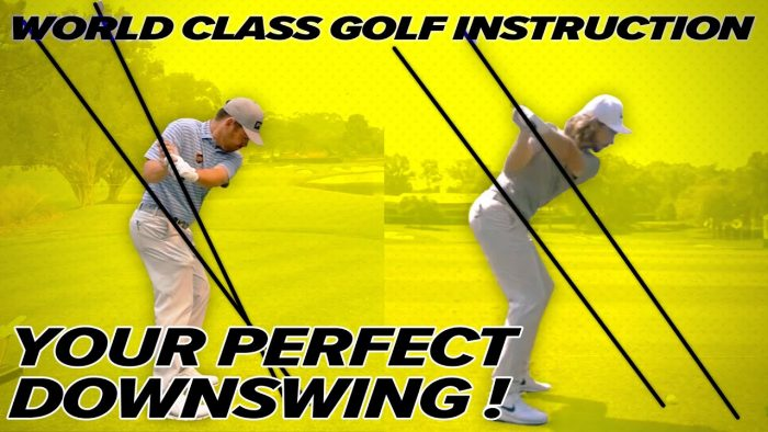 Louis Oosthuizen Golf Swing – Rory Mcllroy, Tommy Fleetwood – Perfect Downswing!